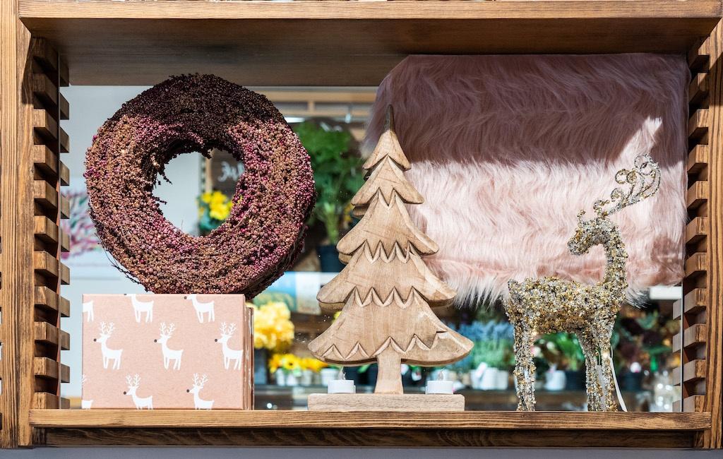 SEWA: Feiern & Freude schenken