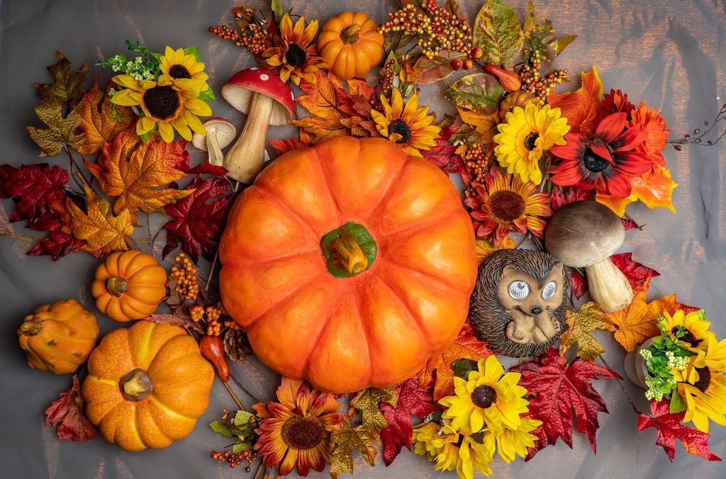 SEWA: Jahreszeiten und Festtage - Herbst